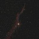 Veil Nebula,                                Lorenzo Palloni
