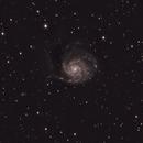 M101 Pinwheel Galaxy,                                Jaimie Thomas