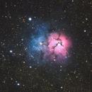 The Trifid Nebula,                                Trevor Jones