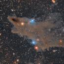 LDN 1235 Dark Shark Nebula,                                Skywalker83