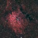 Sharpless 2-86 (NGC6820 and NGC6823),                                Frederick Steiling