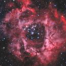 Rosette Nebula (Ha + O3 + RGB),                                Scott Davis