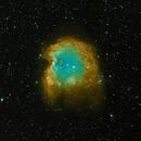 Monkey Head Nebula,                                Pawel Zgrzebnicki