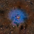NGC7023  URBANA,                                Caronthe