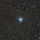 Iris Nebula,                                Andrew Burwell