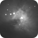 M42 - The Center of the Orion Nebula,                                Freedom