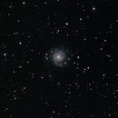 Spiral galaxy, M74 ( NGC 628),                                Steven Bellavia