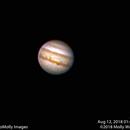 Jupiter #16,                                Molly Wakeling