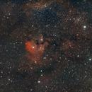 NGC 7822 Widefield,                                Daniel Erickson