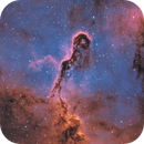 Elephant trunk nebula,                                Roland Ivan