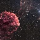 IC433 The Jellyfish Nebula,                                Kasra Karimi