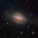 NGC 3521,                                SCObservatory