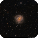 Messier 83 - The Southern Pinwheel,                                Wellerson Lopes