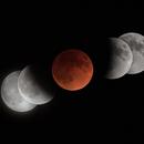 Lunar Eclipse,                                Atsushi Ono