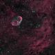 Crescent Nebula in HOO,                                Andrew Barton
