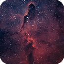 Elephant Trunk (IC1396A) HOO,                                Steven Gill (Parkesburg Observatory)