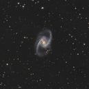 NGC 1365,                                Maicon Germiniani