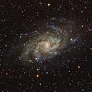 Galaxie M33 dans le Triangle boréal,                                Denis Bergeron