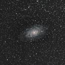 M33 Galaxie 300mm SIGMA-450D,                                Maxou034