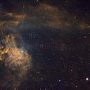 Flaming Star Nebula,                                Ohills