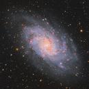 M33 - The Triangulum Galaxy,                                Chen Wu