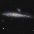 NGC 4631 The Whale Galaxy,                                herwig_p