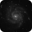 M101,                                Rob Johnson
