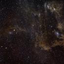 Dark Doodad & Chameleon Dust Cloud,                                Jonah Scott