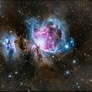 Orion Nebula,                                Firstround
