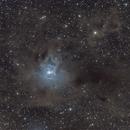 NGC 7023 ,                                MarcoFavuzzi