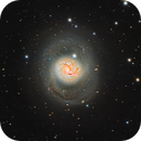 M77,                                Mark Holbrook