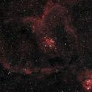 IC1805 Heart Nebula With an Unmodified DSLR,                                John Richards