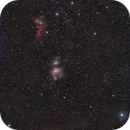 Orion widefield,                                Arno Rottal