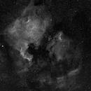 NGC 7000 - The North American Nebula,                                Gregk