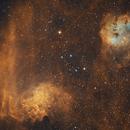 Flaming Star + Tadpoles,                                TobiasLindemann