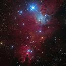 Cone Nebula from Telescope Live,                                Mauricio Christiano de Souza