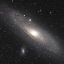 Andromeda Galaxy, M31,                                Steven Bellavia