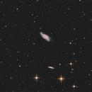 NGC4088, T250 f/4  /  ATIK ONE  /  AZEQ6,                                Pulsar59