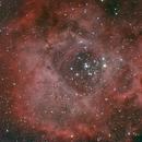 Rosette Nebula,                                Andre van Zegveld