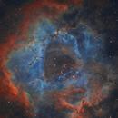NGC2237 Rosette Nebula In SHO,                                johnnywang