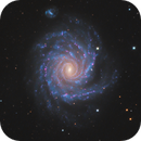 NGC 1232, Spiral Galaxy in Eridanus,                                José Joaquín Pérez