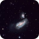 Peculiar Galaxies NGC 4490 and 4485,                                M.J. Post