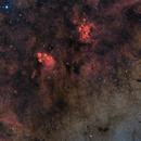 Nebulae in the Scorpion,                                Alessandro Cipolat Bares