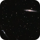 The Whale Galaxy, NGC 4631 and The Crowbar Galaxy, NGC 4656,                                raf2020