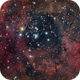 NGC 2244 - OPEN CLUSTER IN THE ROSETTE NEBULA,                                Irineu Felippe de...