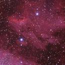 Pelican Nebula,                                Sean Mathews