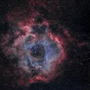 NGC2244 in H(HOO),                                Greg Watkins