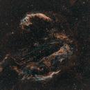 Cygnus Loop/Veil Nebula - widefield,                                Ivan Nair