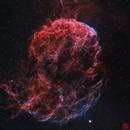 IC443  Jellyfish,                                Wei Li