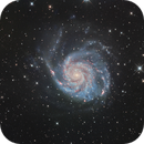 The Pinwheel Galaxy - M101,                                Stefan Westphal